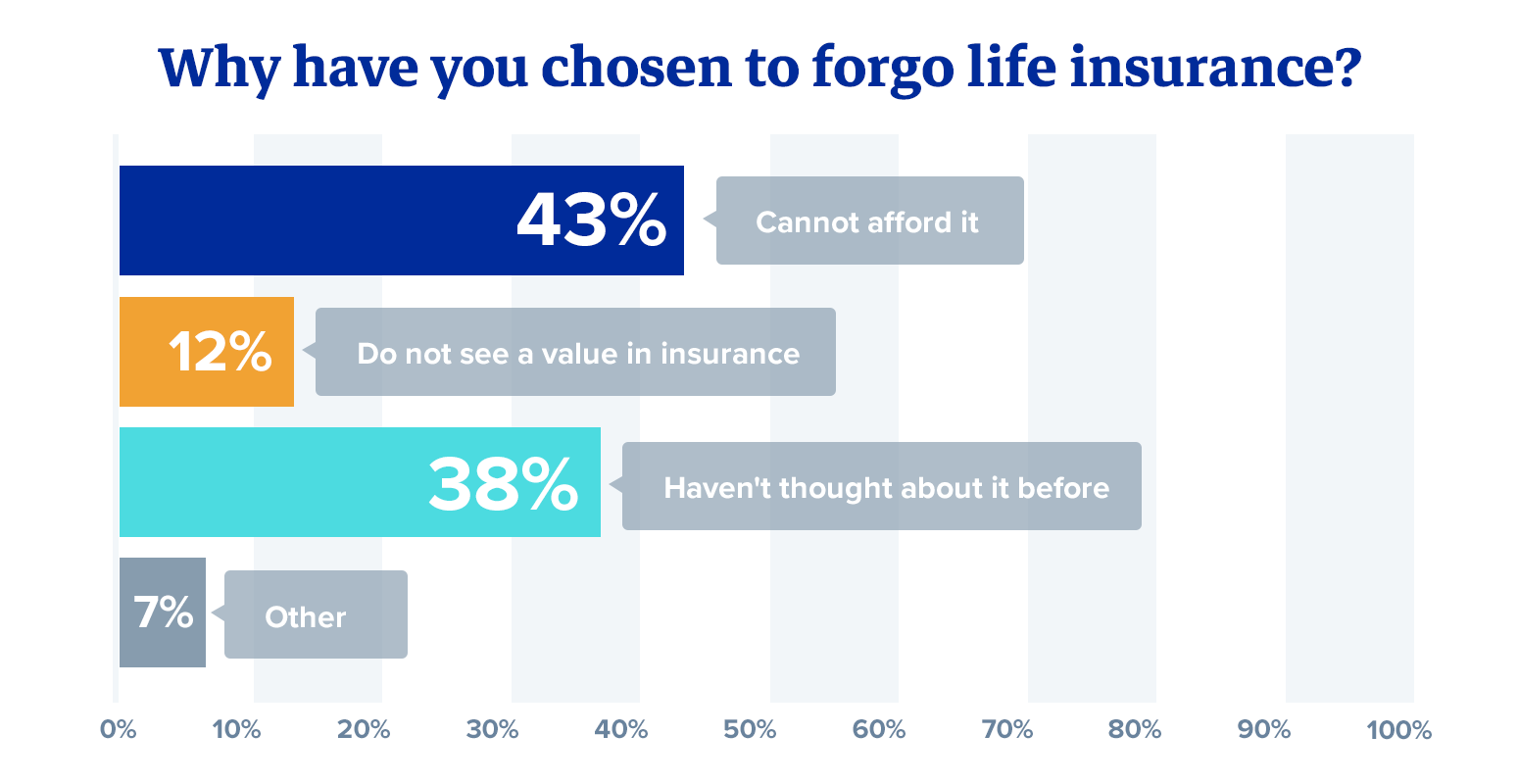 Why have you chosen to forgo life insurance?